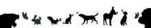 Vector Silhouette Of Animal Se...