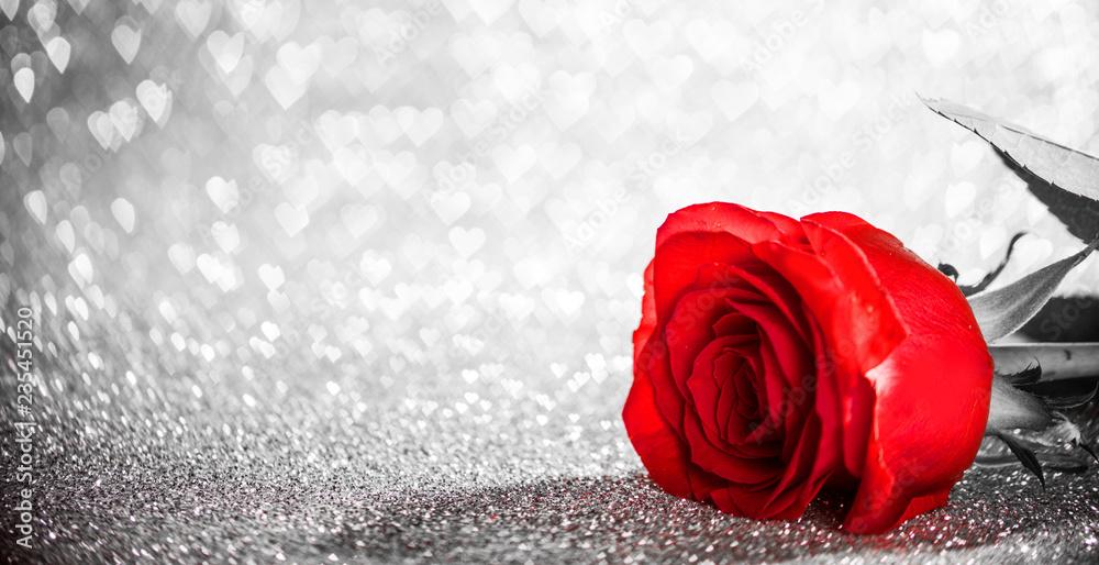 Fototapeta Red rose on glitters