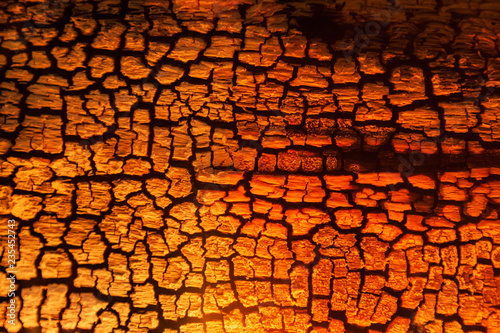 Tuinposter Brandhout textuur Burnt wood texture, abstract background
