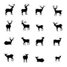 Paper Cut Of Silhouette Deers And Raindeers Isolated On White Background As Montage Merry Christmas , Compose Xmas Festival And Happy New Year Concept. Vector Illustration