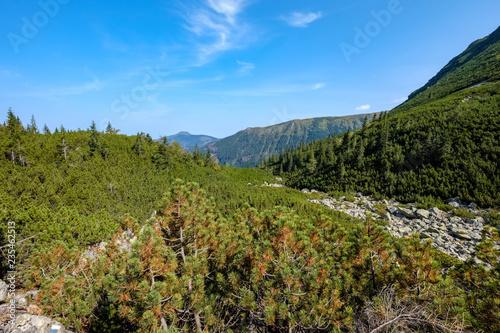 Spoed Foto op Canvas Blauwe hemel Distant mountain cores in slovakia Tatra mountain trails