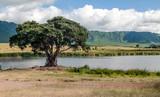 Lake in Tanzania in the Ngorogoro Valley