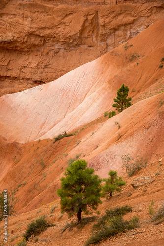 Fotografía  Erodierter Sandsteinhang und Fels, Bryce Canyon National Park, Utah, USA