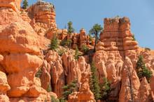 Bizarre Rote Felsformationen Mit Vereinzelten Bäumen Dazwischen, Red Canyon State Park, Utah, USA