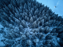 Aerial View From Above Of Winter Forest Covered With Snow. Fir Tree Forest Top View. Lonely Hermit House With Warm Glowing Light From Window On Pine Woods Edge. Smoke From Chimney. Solitude Concept.