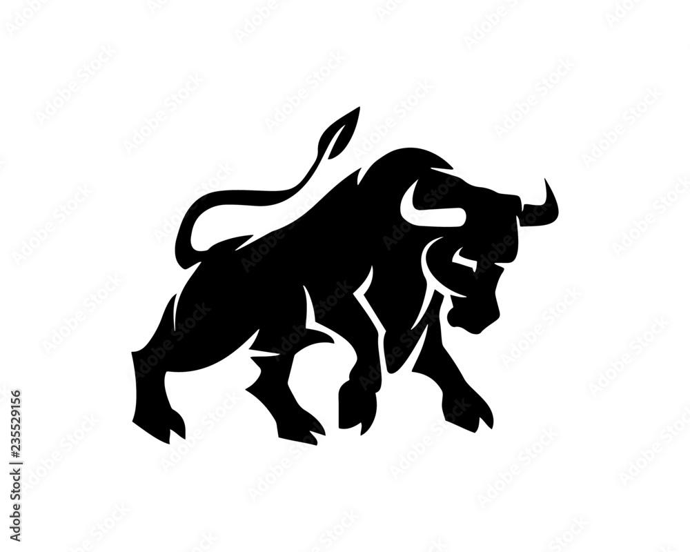 Fototapeta bull