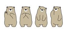 Bear Vector Polar Bear Character Cartoon Illustration Icon Logo Doodle