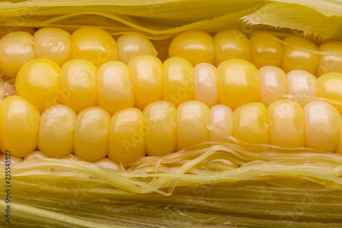 Fotografía  Yellow corn pods Carbohydrate gives the body a white backdrop.