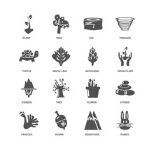 Rabbit, Grow Plant, Artichoke, Peacock, Stones, Plant, Turtle, I