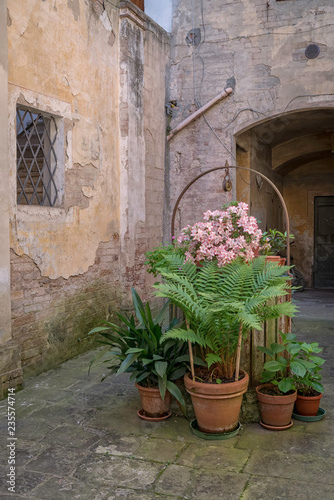 Fototapeten Schmale Gasse Potted Plants Surrounding a Well in the Medieval Town of Buonconvento, Italy