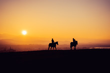 Two Horse Riders On Silhouetted On Sunset Field, Beautiful Peaceful Sport Landscape