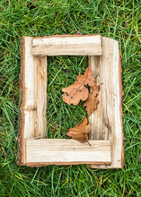 English Letter From Alphabet Made From Natural Oak