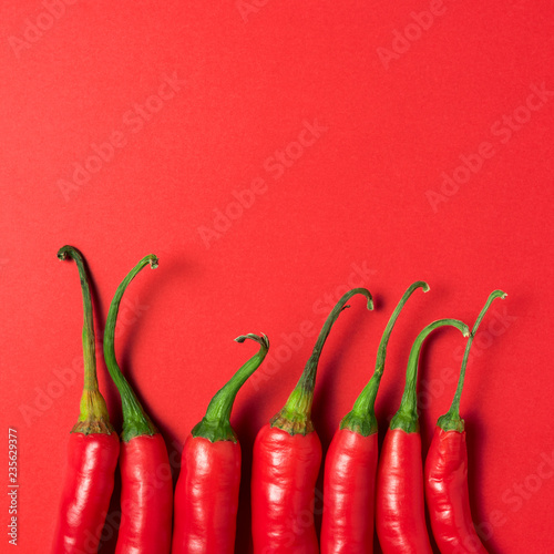 Creative layout of chili pepper on red background. Minimal food concept.