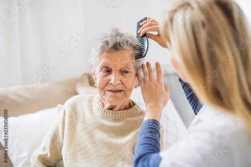 Obraz na płótnie A health visitor combing hair of senior woman at home..