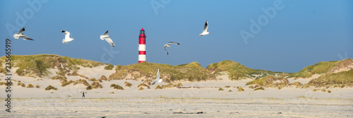 Leuchtturm mit Möwen auf Insel Amrum