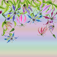 Fototapeta Egzotyczne Beautiful gloriosa flowers on climbing twigs on colorful gradient background. Seamless pattern. Floral border. Watercolor painting. Hand drawn and painted illustration.