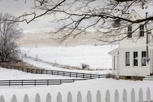 A Blanket Of Snow And A Warm House, Otsego County, Upstate New York.