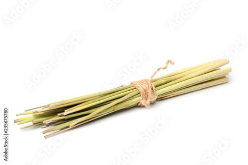 Tuinposter Kruiderij Bundle of lemon grass
