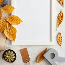 Autumn Composition Background....