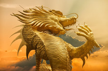 Golden Chinese Dragon With Sun...