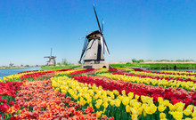 Traditional Dutch Scenery With...