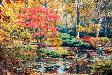 Panel Szklany Orientalny autumn in Japanese park