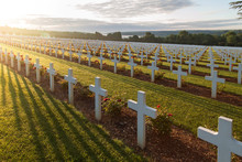 Rows Of Crosses At Douaumont O...