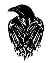 Raven Bird With Closed Wings -...