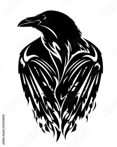 Fototapeta raven bird with closed wings - black and white vector outline