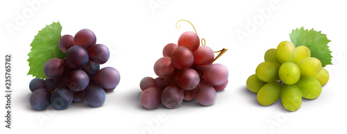 Grapes Realistic Composition Wallpaper Mural