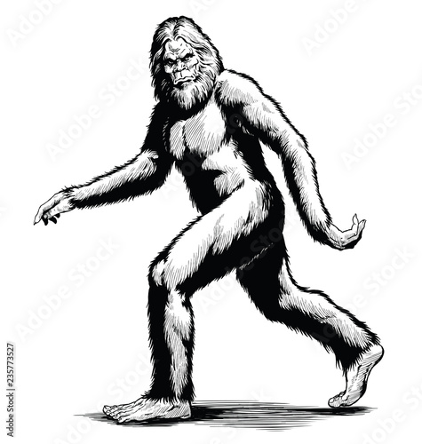 Walking Sasquatch vector illustration in black and white