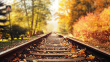 Colorful Autumn Leaves Falling Down On Railway Tracks