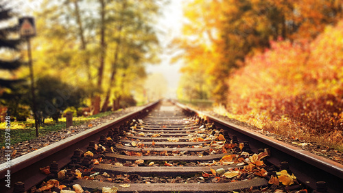 Montage in der Fensternische Artist KB Colorful autumn leaves falling down on railway tracks