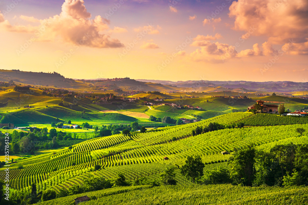 Fototapety, obrazy: Langhe vineyards sunset panorama, Barolo, Piedmont, Italy Europe.