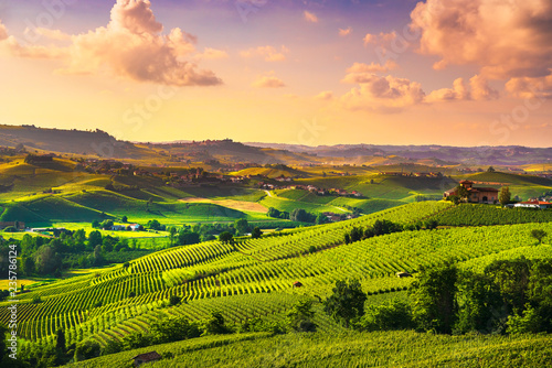 La pose en embrasure Vignoble Langhe vineyards sunset panorama, Barolo, Piedmont, Italy Europe.