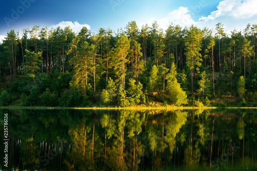 Zdjęcie XXL Jezioro z drzewami