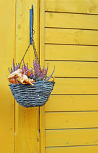 Hanging Baskets With Heather