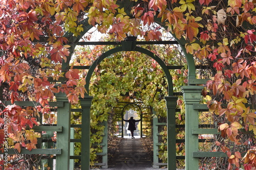 Photo Autumn Archway at Kadriorg Palace - Tallinn, Estonia
