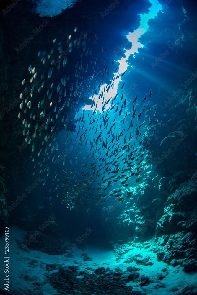 Fototapeta Morze czerwone Dahab