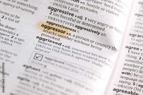 The word or phrase Aggressor in a dictionary. Canvas Print