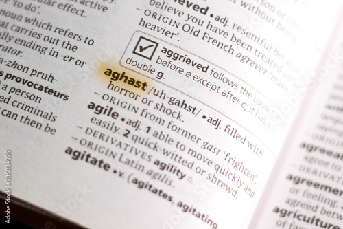 The word or phrase Aghast in a dictionary. Wallpaper Mural