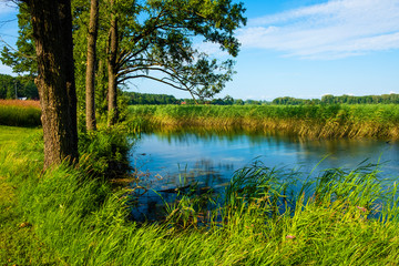 Obraz na SzklePanoramic view of Wulpinskie Lake at the Masuria Lakeland region in Poland in summer season