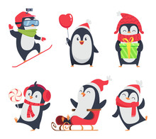 Penguin Characters. Cartoon Wi...