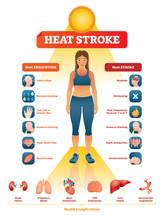 Heat Stroke Vector Illustratio...