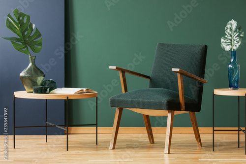 Fotografía  Wooden armchair between tables with leaves in green and blue living room interior