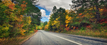Asphalt Road Path Walkway Through Beautiful Autumn Forest. Panoramic Composition
