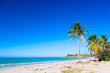 Vacation holidays background wallpaper. Palm trees and tropical beach in Varadero, Cuba.