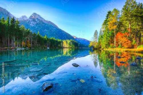 Poster Landscapes Beautiful autumn sunrise scene with trees near turquoise water of Hintersee lake