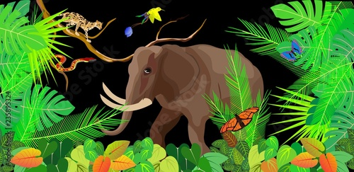 Jungle vector scene, wildlife theme, elephant and wild cat