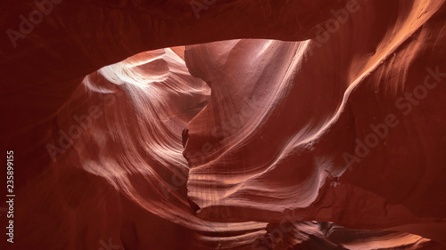 Foto auf AluDibond Braun Curve waveform orange yellow sandstone in Upper Antelope reflecting sunlight, Arizona